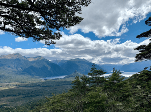 Gluten-Free Guide to New Zealand
